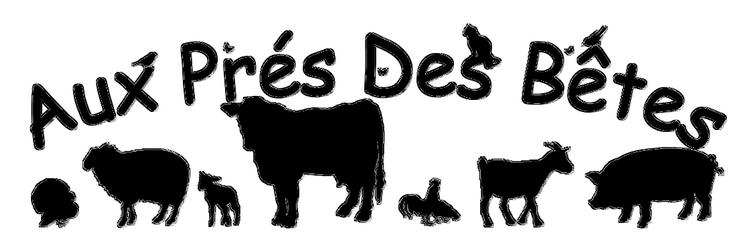 Aux Prés Des Bêtes